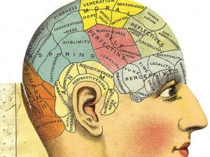 Phrenology head from -featured
